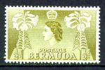 БЕРМУДА 1953-62гг. GB# 135 / 1/2d. MNH OG VF / ФЛОРА